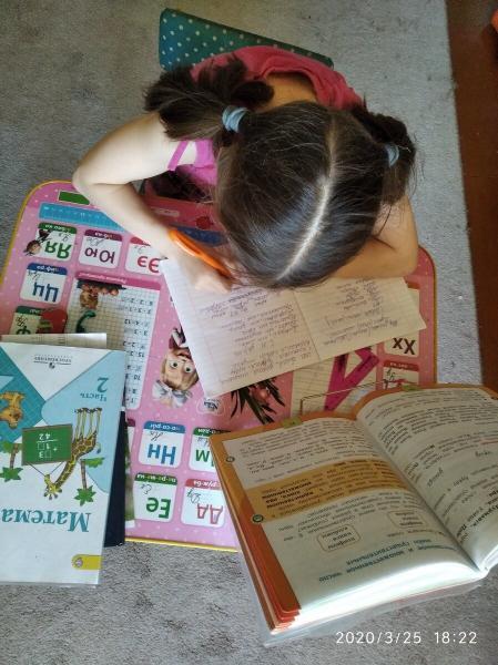 Я думала, что ребёнка можно не заставлять делать уроки, но ошибалась