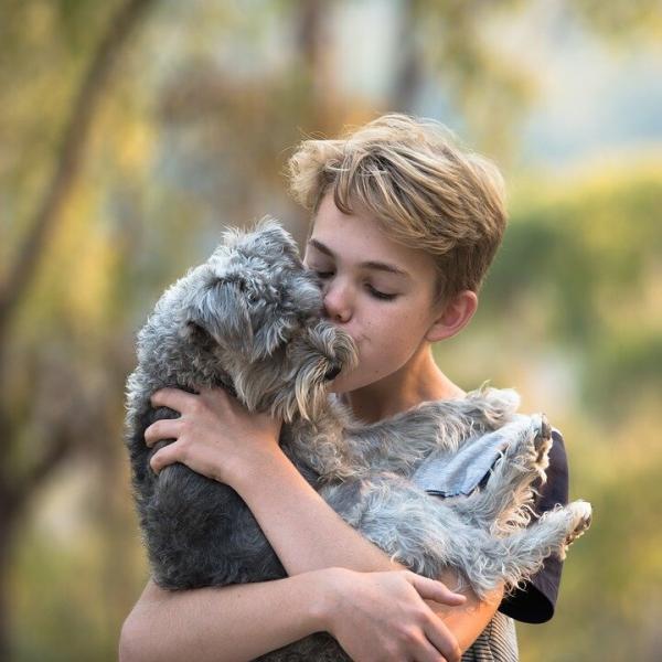 «Собаки, подходящие для детей»: существуют ли такие?