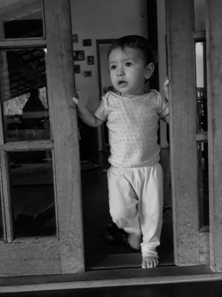 Записки из джунглей Бразилии - конкурс фотографии для детей