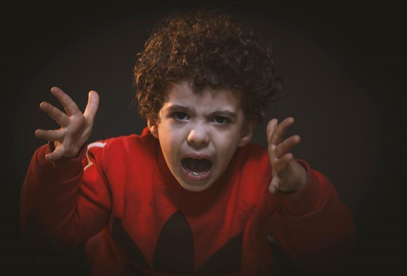 """""""Дай мне!"""": избалованные дети и глупость их матерей"""