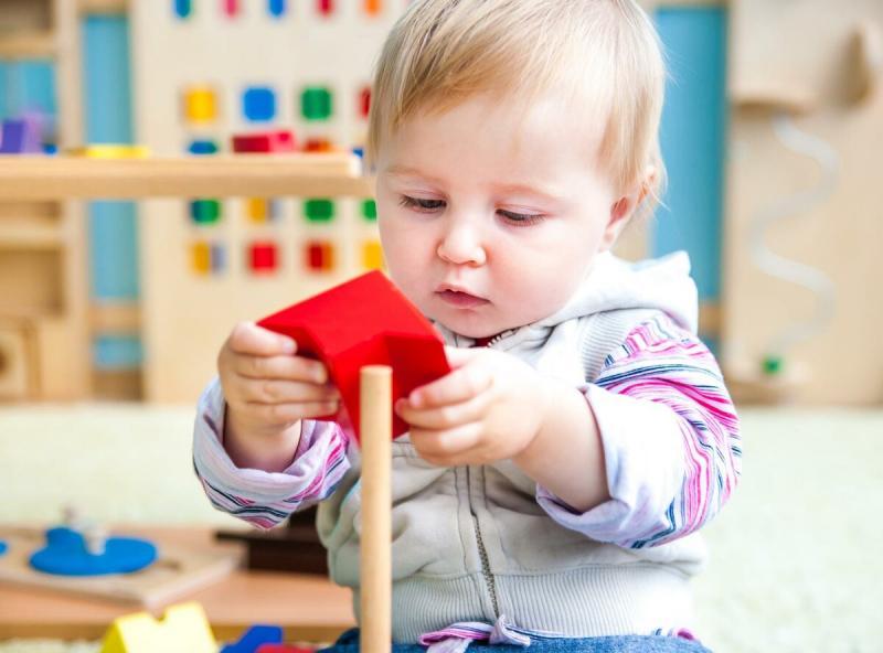 Развивающие методики для малышей - что выбрать?