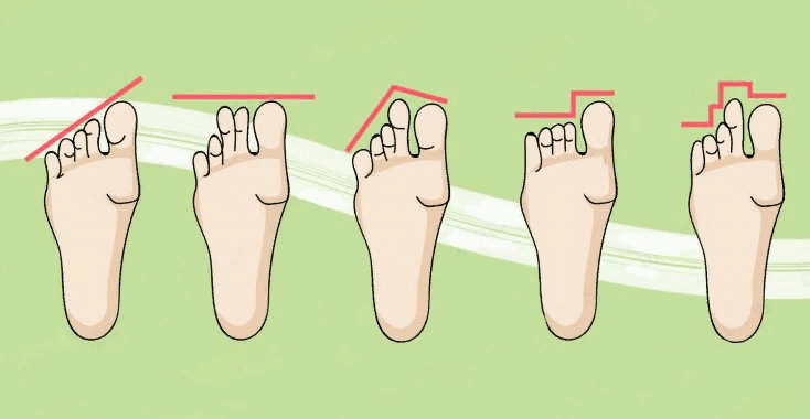 Знаете ли вы, что пальцы на ногах могут многое рассказать о вашей личности?