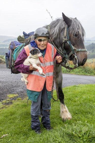 Для тех, кто любит: пожилая британка проезжает 1000 км на пони каждый год